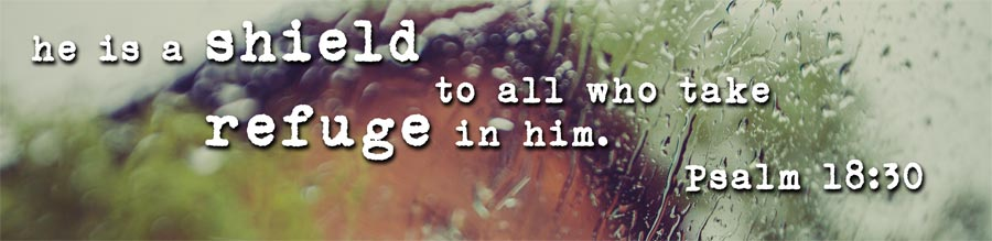 He is a shield to all who take refuge in Him!